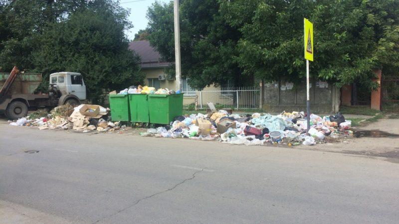 После вмешательства активистов ОНФ власти убрали навалы мусора вокруг контейнерной площадки в Краснодаре