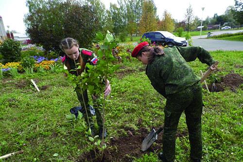 В Калининском районе посадят деревья в честь погибших воинов