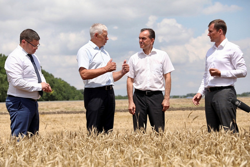 В Краснодарском крае собрано более 7,7 млн тонн зерна