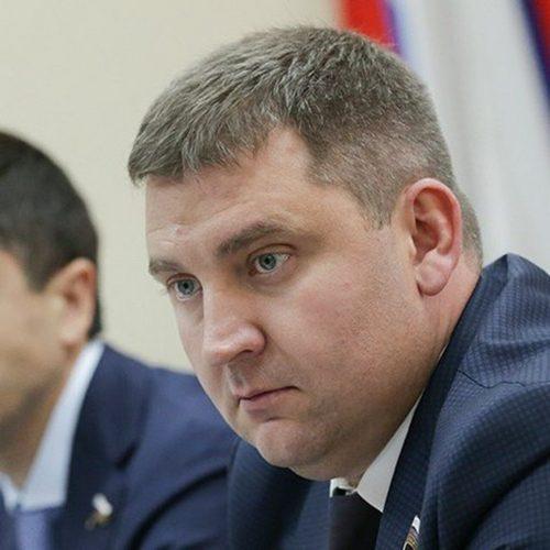 Выборы-2020 Ламейкин Д.В. Депутат ГД ФС РФ