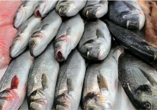 Гельминтозы, передающиеся через рыбу и рыбную продукцию