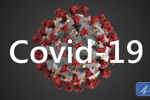 Сводка по COVID– 19