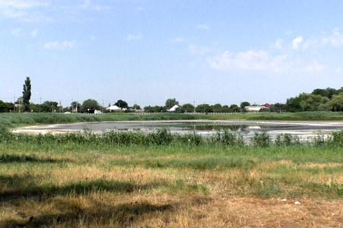 В Калининском районе мерами прокурорского реагирования удалось добиться возмещения ущерба, причиненного водным биологическим ресурсам в результате преступления на сумму свыше 2 млн. рублей