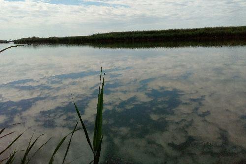 За уровнем воды в реках ведется ежедневное наблюдение