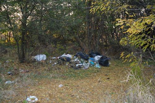 Хитроумная семейка получила штраф за тайно вывезенный мусор на калининскую свалку.