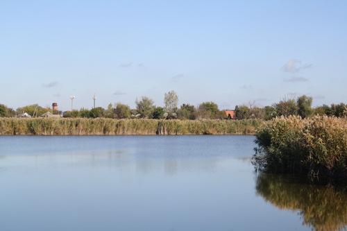 Добровольцы очистили берега реки Понура