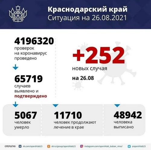 За сутки на Кубани зафиксировали 252 случая заболевания COVID-19